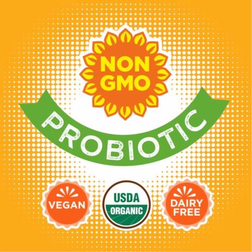 Simple Truth Organic™ Sparkling Probiotic Orange Mango Kefir Water Drink Perspective: back
