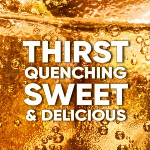 Big K® Caffeine Free Ginger Ale Soda Perspective: back