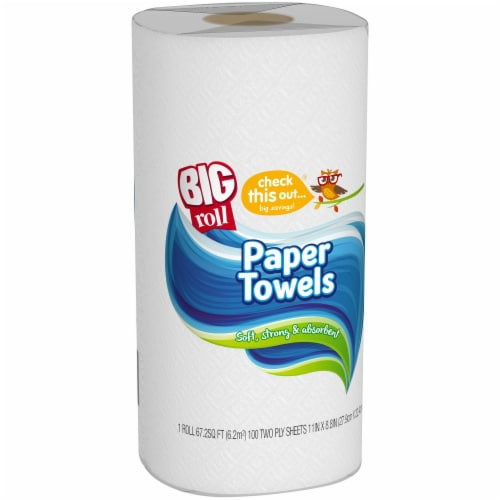 check this out...® Big Roll Paper Towel Perspective: back