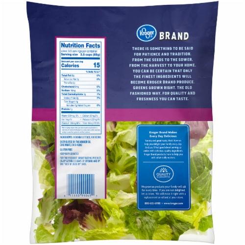 Kroger® Italian Style Blend Salad Perspective: back