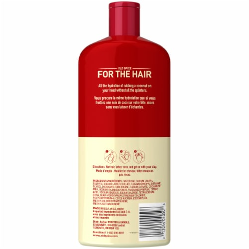 Old Spice Fiji 2-in-1 Shampoo & Conditioner Perspective: back