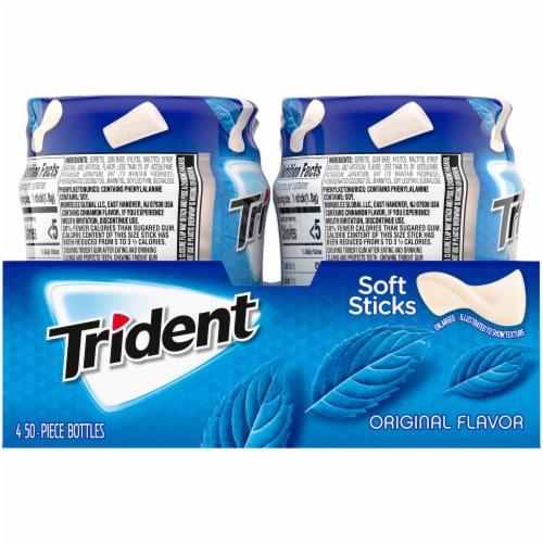 Trident Original Flavor Sugar Free Gum Perspective: back