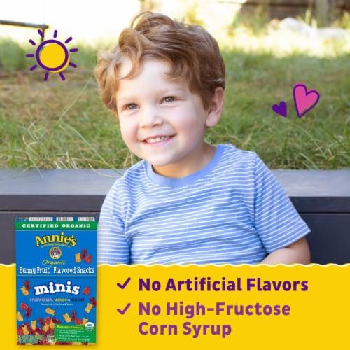 Anne's Organic Mini Bunny Fruit Snacks Perspective: back