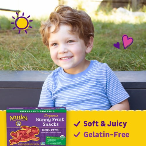 Annie's Organic Berry Patch Bunny Fruit Snacks Perspective: back