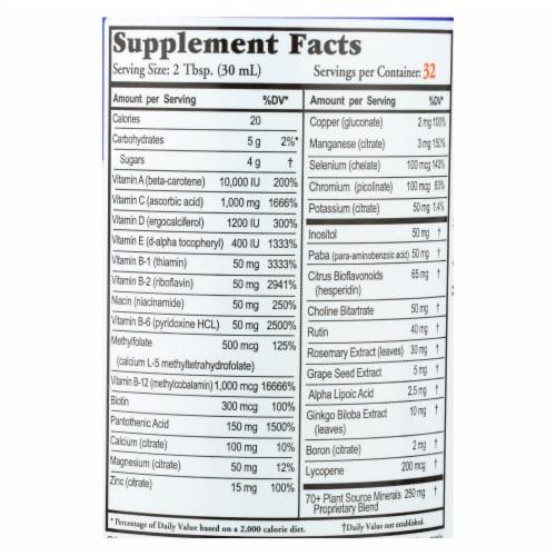 Buried Treasure™ VM-100 Complete Orange Zest Liquid Dietary Supplement Perspective: back