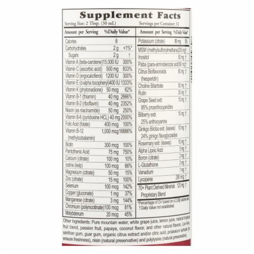 Buried Treasure™ Active 55 Liquid Nutrients Dietary Supplement Perspective: back