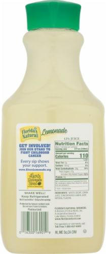 Florida's Natural Lemonade Perspective: back