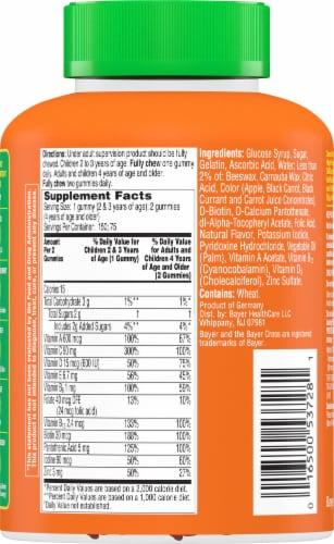 Flintstones™ Gummies Kids Vitamins With Immunity Support Perspective: back