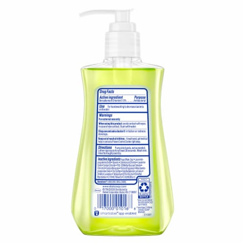Dial Aloe Antibacterial Liquid Hand Soap Perspective: back