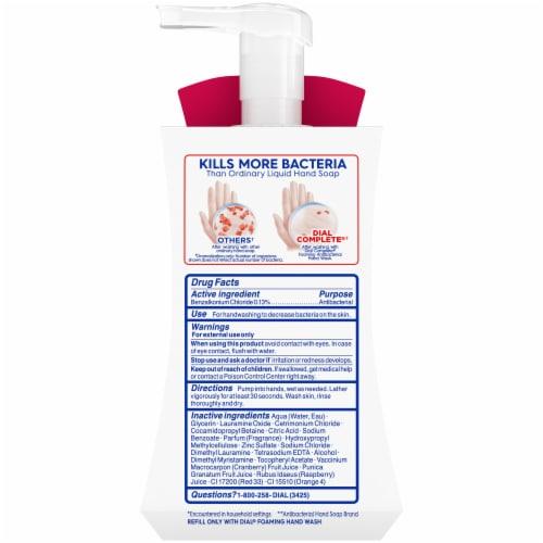 Dial Complete® Power Berries Foaming Antibacterial Hand Wash Perspective: back