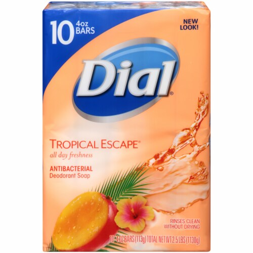 Dial® Tropical Escape® Antibacterial Deodorant Bar Soap Perspective: back