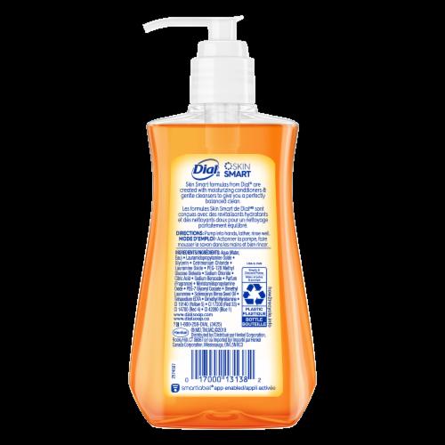 Dial Marula Oil Moisturizing Liquid Hand Soap Pump Perspective: back