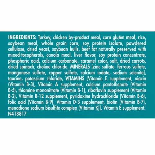 Purina ONE Indoor Advantage Hairball & Weight Control Natural Dry Cat Food Perspective: back