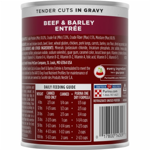 Purina ONE Natural SmartBlend Tender Cuts in Gravy Beef & Barley High Protein Wet Dog Food Perspective: back