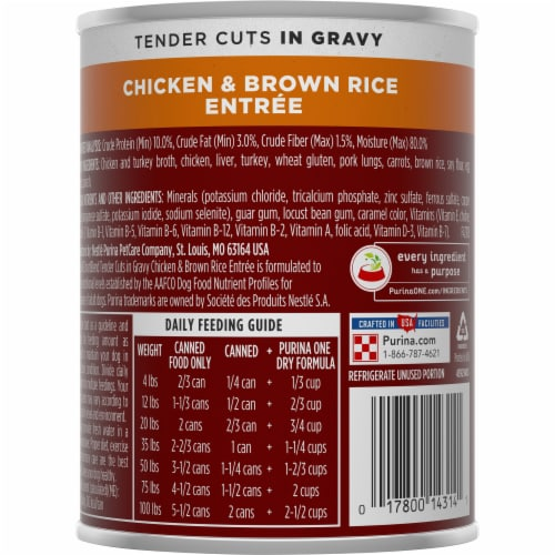 Purina ONE SmartBlend Tender Cuts Chicken & Brown Rice Entree in Gravy Adult Wet Dog Food Perspective: back