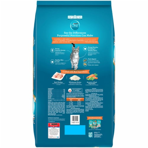 Purina ONE Tender Selects Blend with Real Chicken Natural Dry Cat Food Perspective: back
