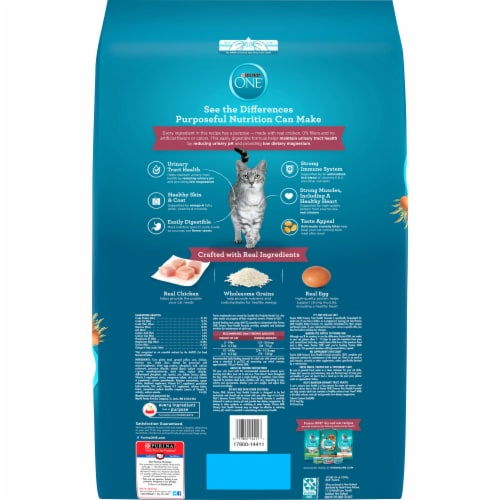 Purina ONE Urinary Tract Health Dry Adult Cat Food Perspective: back