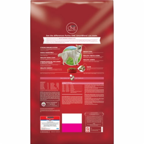 Purina ONE SmartBlend Sensitive Systems Formula Natural Dry Adult Dog Food Perspective: back
