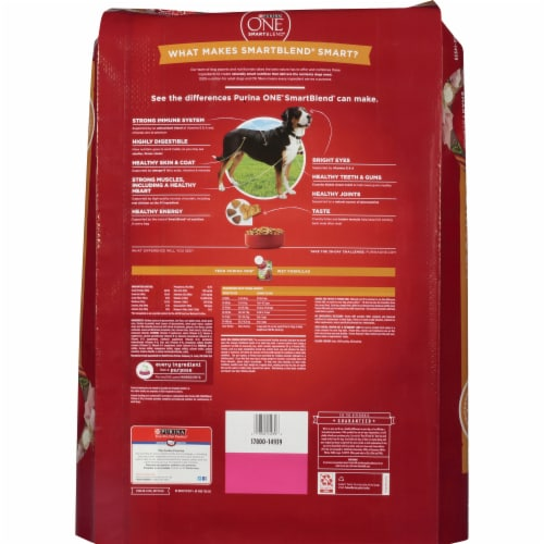 Purina ONE SmartBlend Chicken & Rice Formula Natural Dry Dog Food Perspective: back