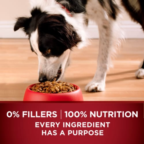 Purina ONE SmartBlend True Instinct with Real Salmon & Tuna Natural Dry Dog Food Perspective: back
