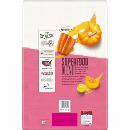 Beyond Superfood Blend Salmon Egg & Pumpkin Recipe Adult Dry Natural Dog Food Perspective: back