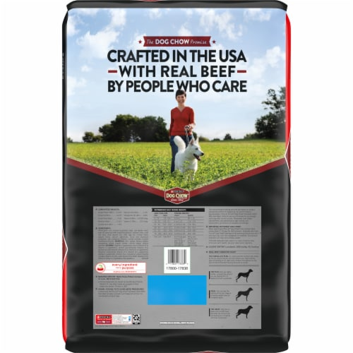Dog Chow Complete Adult with Real Beef Dry Dog Food Perspective: back