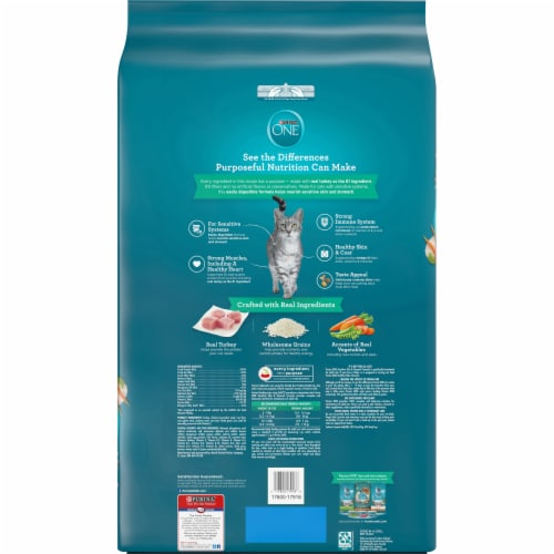 Purina ONE Sensitive Skin and Stomach Dry Adult Cat Food Perspective: back