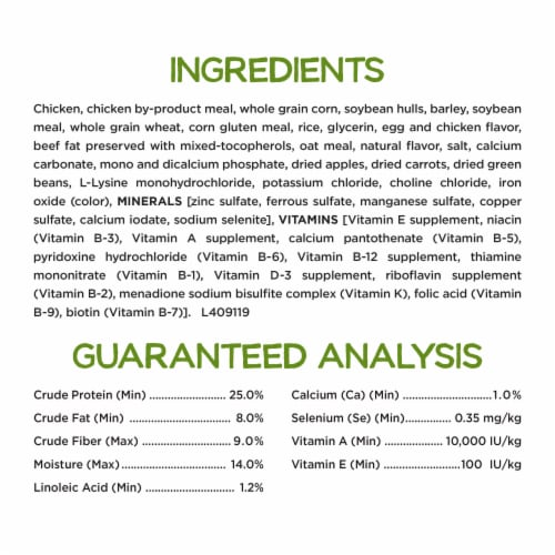 Beneful Healthy Weight with Real Chicken Dry Dog Food Perspective: back