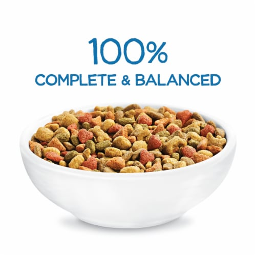 Purina Beneful Healthy Puppy With Real Chicken Dry Dog Food Perspective: back