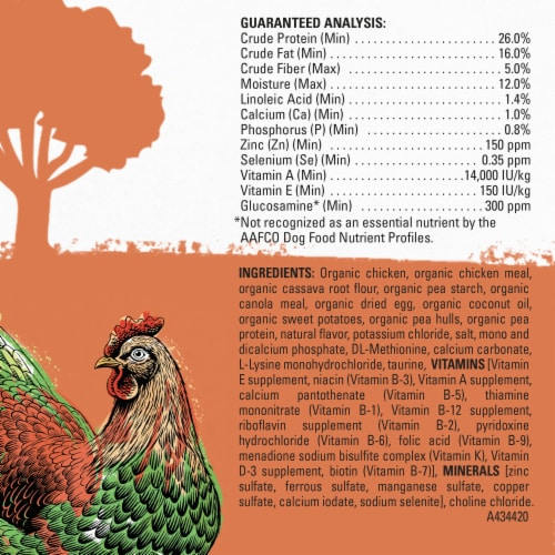 Beyond Organic Chicken Egg & Sweet Potato Adult Dry Dog Food Perspective: back