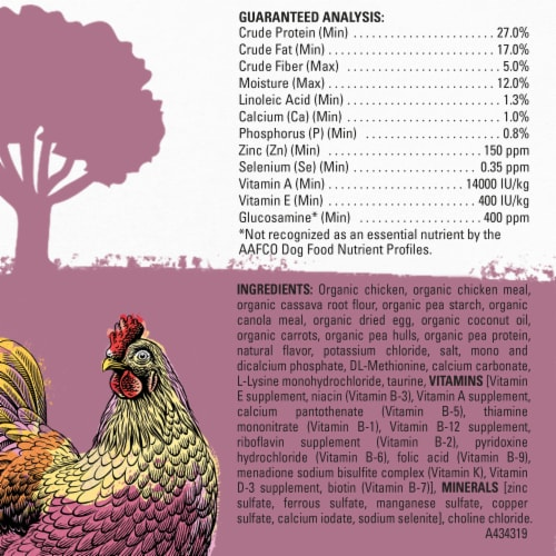 Beyond Organic Chicken Egg & Carrot Recipe Dry Small Dog Food Perspective: back