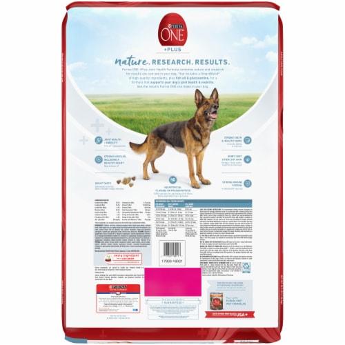 Purina ONE SmartBlend Joint Health Formula Dry Adult Dog Food Perspective: back