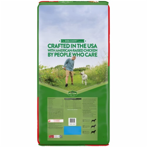 Purina® Dog Chow Complete Adult with Chicken Dry Adult Dog Food Perspective: back