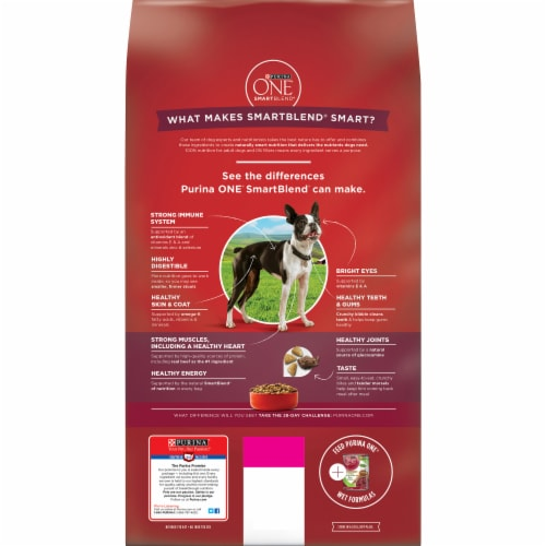 Purina ONE SmartBlend Small Bites Beef & Rice Formula Dry Dog Food Perspective: back