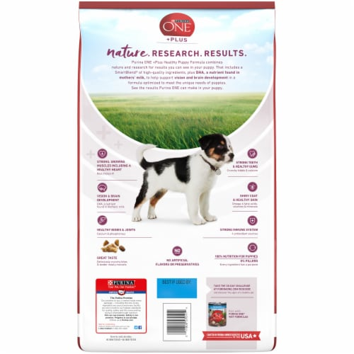 Purina ONE SmartBlend Healthy Puppy Formula Natural Dry Puppy Food Perspective: back