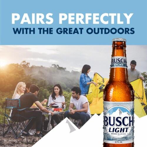 Busch Light® Lager Beer Perspective: back