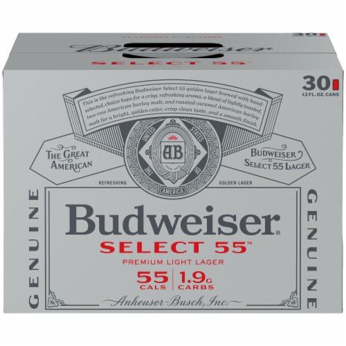 Budweiser Select 55 Light Lager Beer Perspective: back
