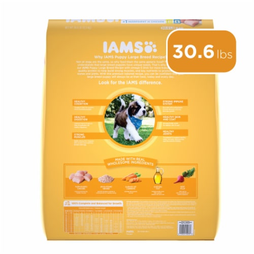 IAMS ProActive Chicken Health Smart Large Breed Dry Puppy Food Perspective: back