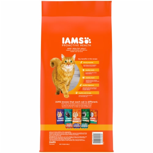 IAMS Proactive Health Healthy Adult with Chicken Cat Food Perspective: back