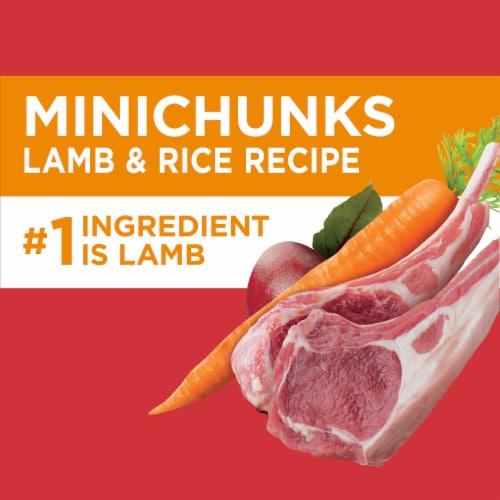 IAMS Minichunks Lamb & Rice Recipe Dry Adult Dog Food Perspective: back