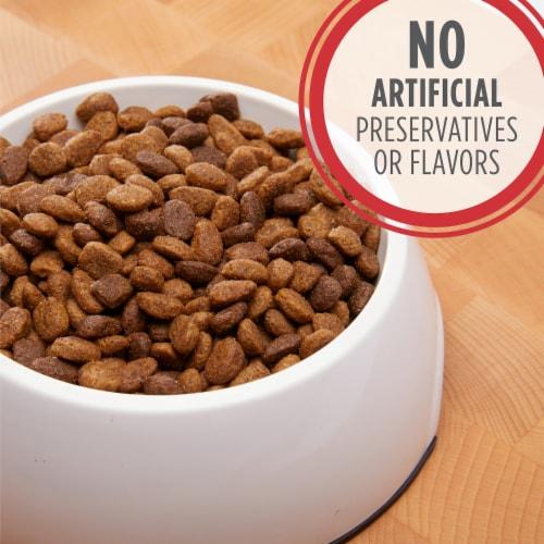 IAMS Proactive Health Lamb and Rice Dry Dog Food Perspective: back