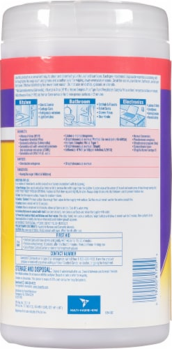 Lysol® Dual Action Citrus Scent Disinfecting Wipes Perspective: back