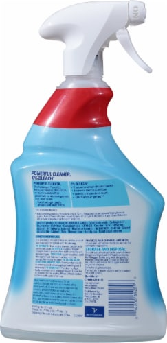 Lysol® Hydrogen Peroxide Multi-Purpose Cleaner Perspective: back