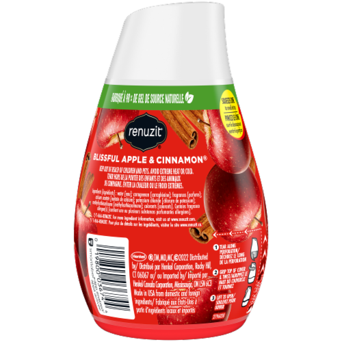 Renuzit Blissful Apple & Cinnamon Gel Air Freshener Perspective: back