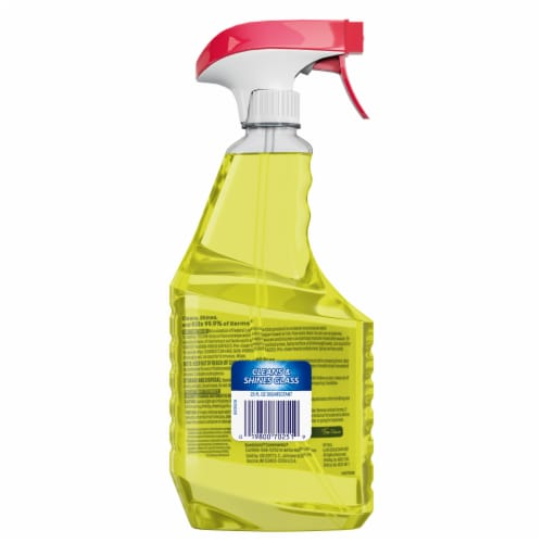 Windex Citrus Fresh Multi-Surface Disinfectant Cleaner Perspective: back