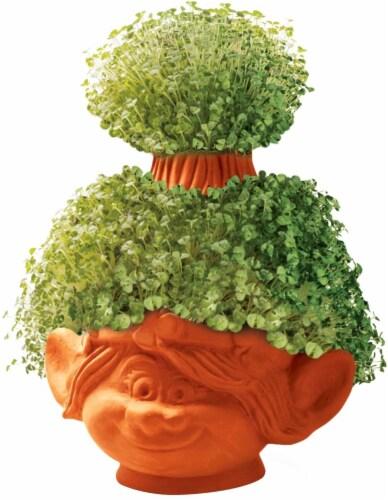 Chia Pet® DreamWorks Trolls Poppy Decorative Planter - Brown Perspective: back