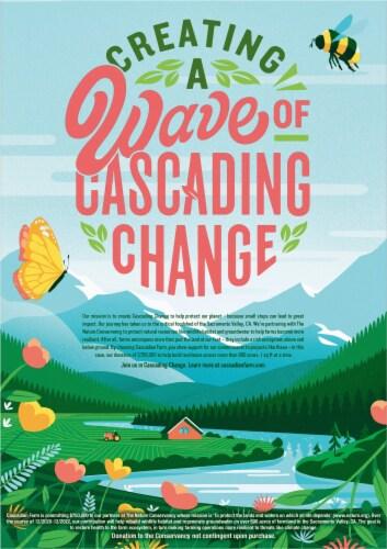 Cascadian Farm Organic Ancient Grains Granola Cereal Perspective: back