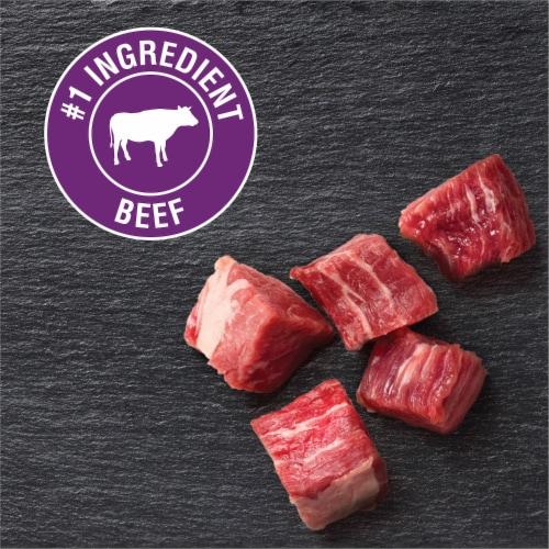 Cesar® Filet Mignon Flavor Classic Loaf in Sauce Wet Dog Food Perspective: back