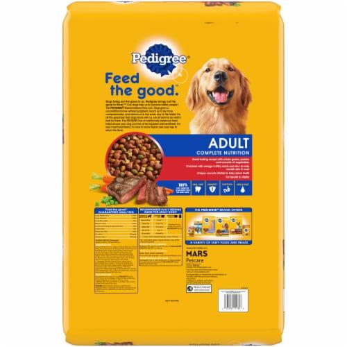 Pedigree Adult Complete Nutrition Grilled Steak & Vegetable Flavor Dry Dog Food Perspective: back
