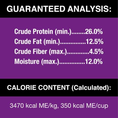 Cesar Filet Mignon Flavor Dry Dog Food Perspective: back